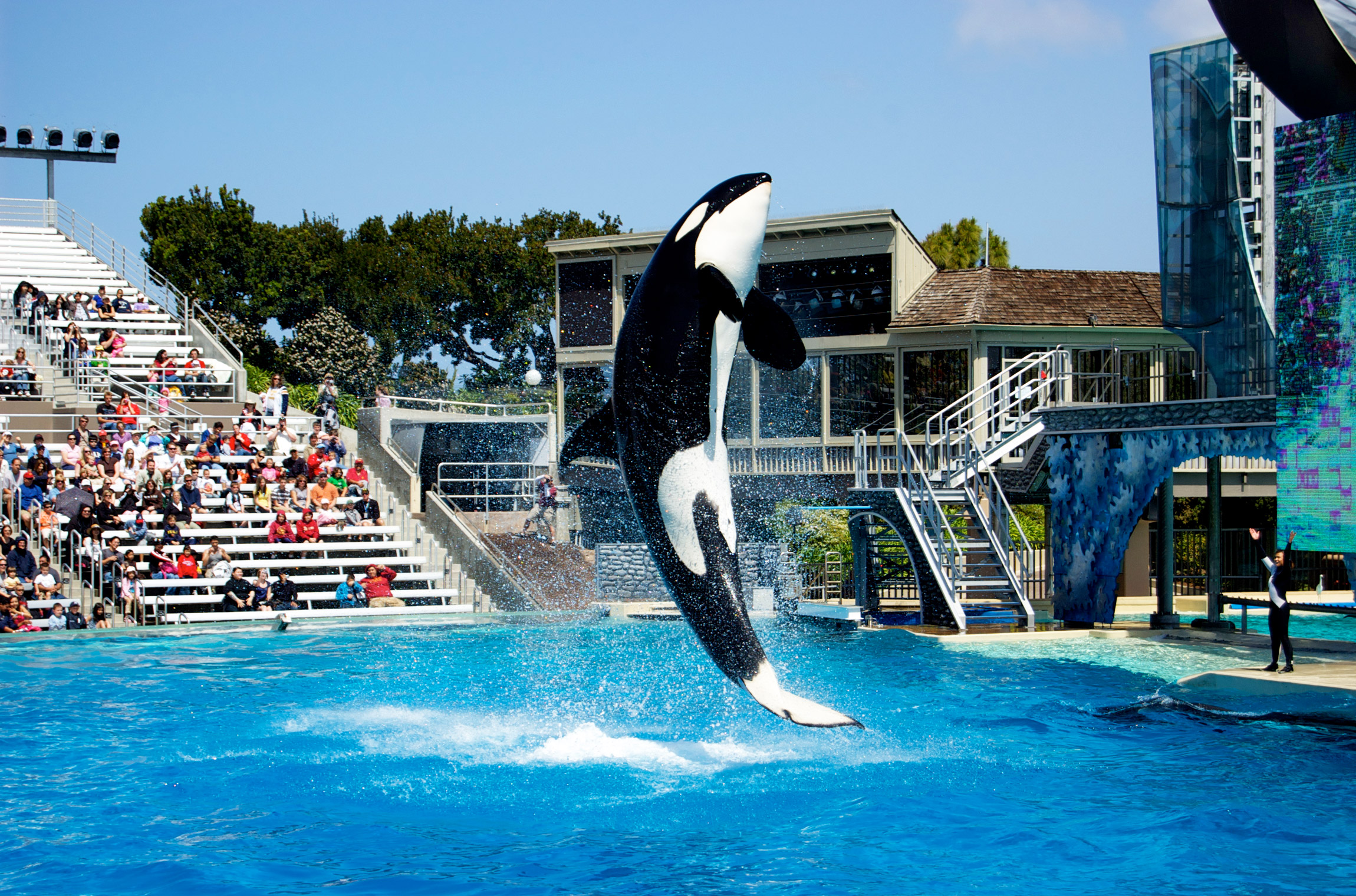 Seaworld San Diego Map Pdf.San Diego Vacation 10 Fun Things To Do